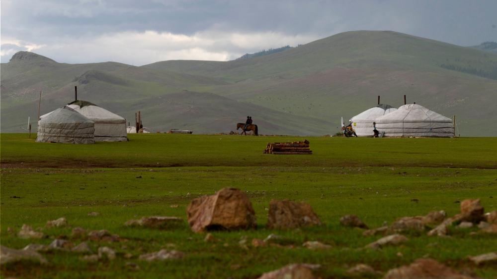 Was gibt es im Gorkhi-Terelj-Nationalpark zu sehen und zu tun?